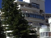 ct-bent-trees-from-wind-off-buildings