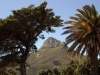 South Africa, Cape Town - Lions Head