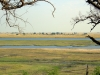 Chobe National Park - View
