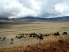 serengeti-and-ngorongoro-crater-view-1