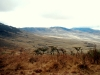 serengeti-and-ngorongoro-crater-view-31