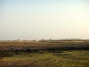 Chobe National Park - View 4