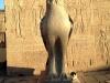 Edfu - Egypt - img_1623