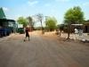 Kasane - Warthog chase 3