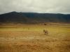 serengeti-and-ngorongoro-crater-view-11