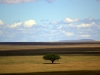 serengeti-and-ngorongoro-crater-view-43